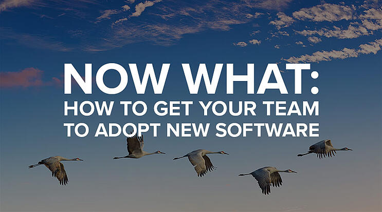 team-adopt-new-software-overlay-900x500.jpg
